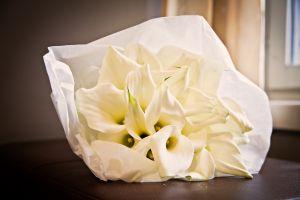 wedding-7808.jpg